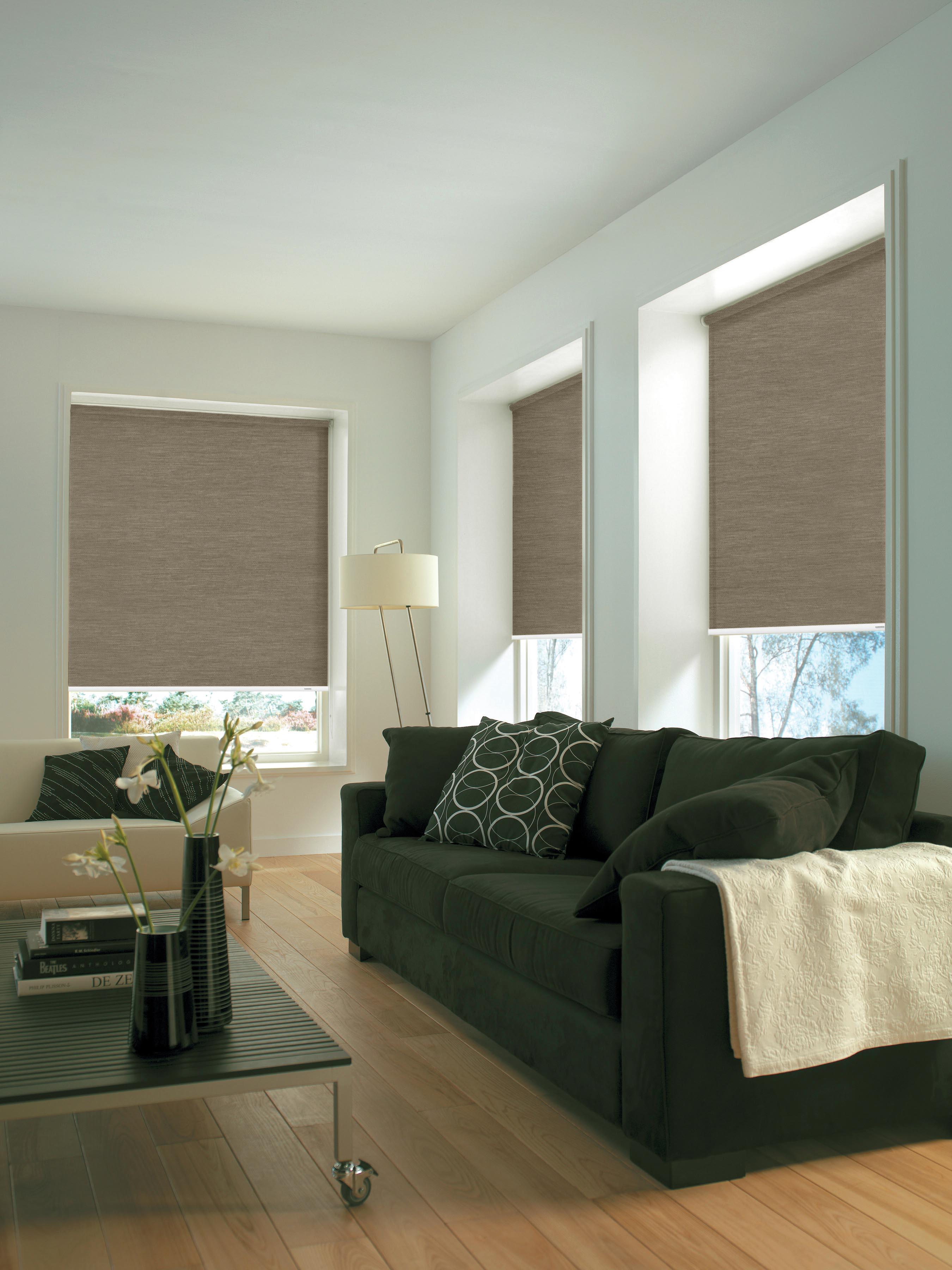 lichtdurchl ssig seitenzug rollo rollos fixma e sicht sonnenschutz bn gardinen. Black Bedroom Furniture Sets. Home Design Ideas