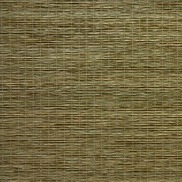 schiebegardine fl chenvorhang dekor tiger schiebegardinen gemustert schiebevorh nge. Black Bedroom Furniture Sets. Home Design Ideas